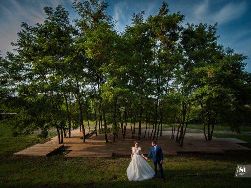 Ioana & Dumi – After Wedding Session – Castelul Banffy